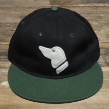 EBBETS FIELD FLANNELS Barbers Point Pointers Twill  Panel Strap Back Cap Black/dark Green